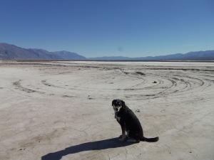 Choppy in Death Valley