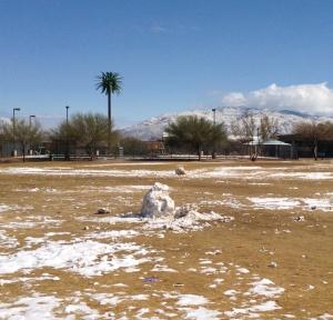 Tucson Snowman