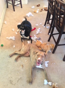 Choppy and Juliet Amid the Carnage