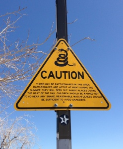 New Mexico Rest Area Snakes