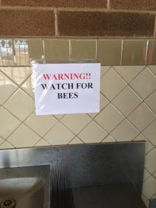 Arizona Rest Area Bees
