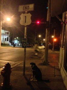 OK, this isn't Maine. This is Key West. Choppy is standing at one end of U.S. 1...