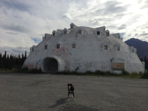 This is a giant igloo on the road between Anchorage and Fairbanks. I don't really have anything to say about this, I just wanted to show off a picture of a giant igloo.