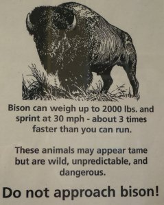 "Here is my initial thought on seeing this sign: ""Right...like there are going to be bison hanging out at a rest area."""