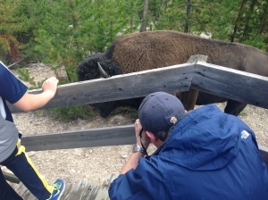 Apparently, we decided the best thing to do in this situation was to get closer (in our defense, there were bison all over this path. They were impossible to avoid).
