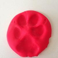Dog Blog Challenge - Day 18: Choppy's Paw Print