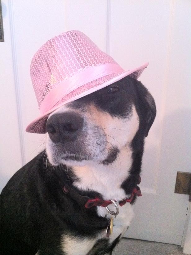 05 - Pink Hat