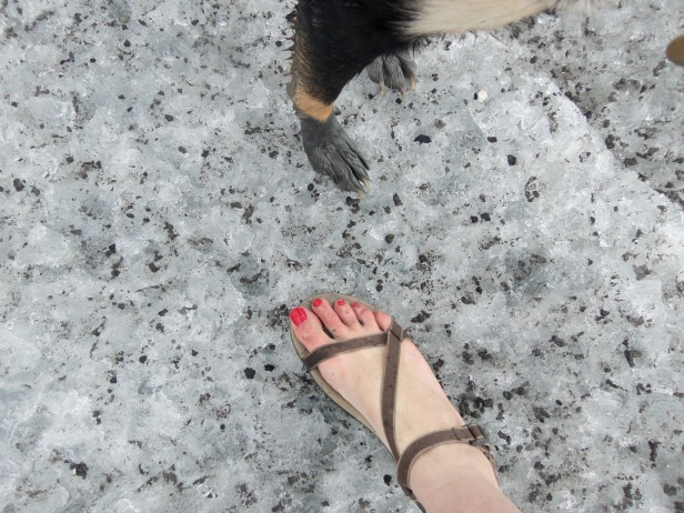 If ever you see me at an Alaska glacier, you'll know me because I'm the one wearing sandals on a giant sheet of ice.