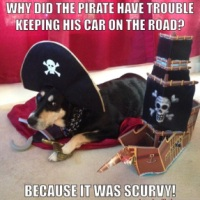 Meme Monday: Pirate Jokes