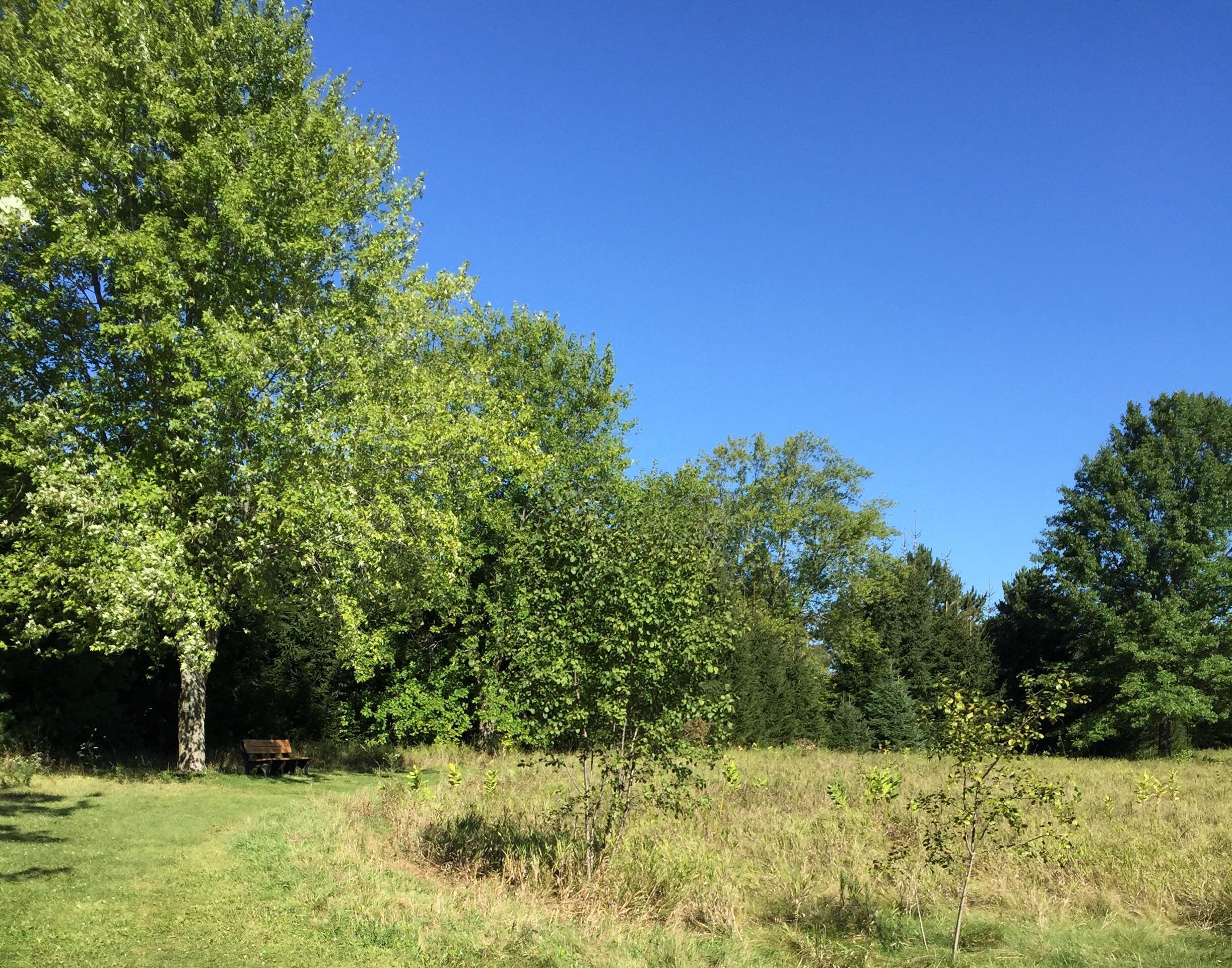 Jefferson County Dog Park