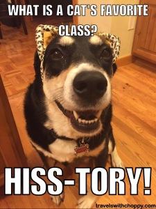 Hiss-Tory