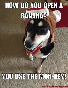 How do you open a banana? You use the mon-key!