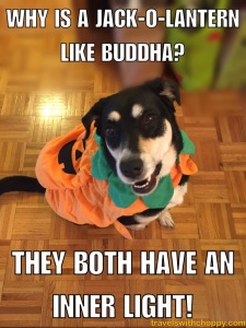 why is a jack o lantern like buddha? They both have an inner light