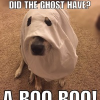 Bad Jokes: Ghost Edition