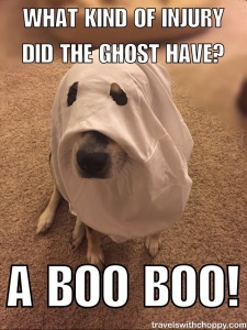 What kind of Injury did the ghost have? A boo boo!