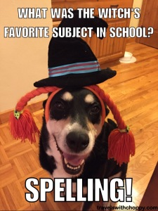 What was the witch's favorite subject in school - spelling
