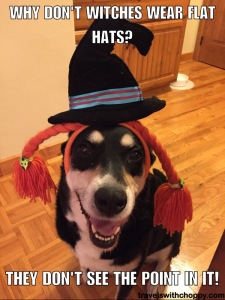 Why don't witches wear flat hats - they don't see the point in it
