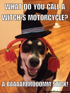 what do you call a witch's motorcycle - a barrrooomm stick
