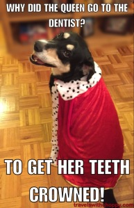 Crowned Teeth Joke
