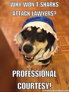 Professional Courtesy