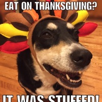 Bad Jokes: Thanksgiving Edition