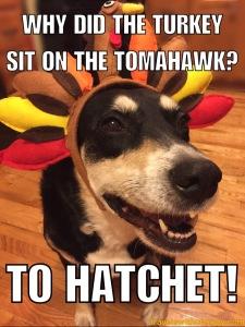 To Hatchet
