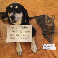Happy Mutts Day!