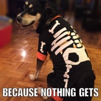 Corny Dog Jokes: Skeleton Edition Part Two