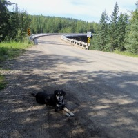 6 Can't Miss Sights on the Alaska Highway