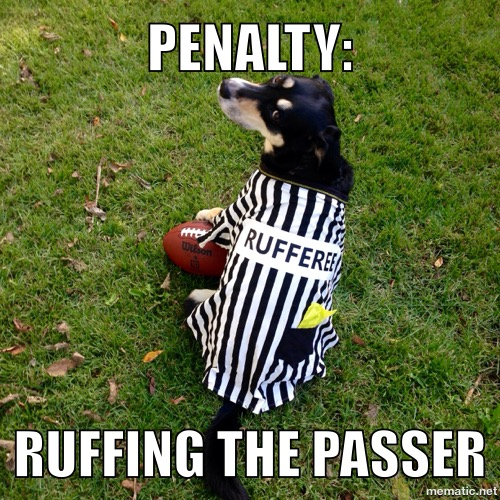 Meme - Ruffing the Passer