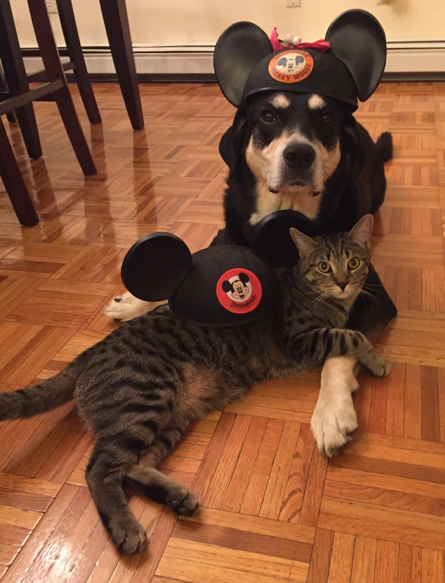 Howlidays: Mickey Mouse Day