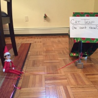 Elf on the Shelf: Cat Trap