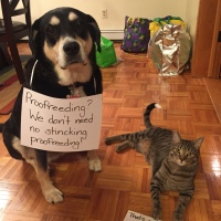 Howlidays: Proofreading Day