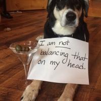 Howlidays: Martini Day