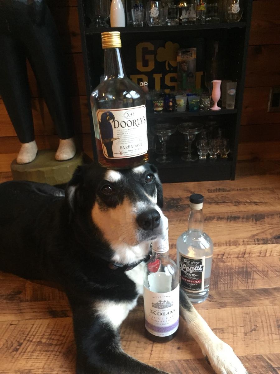 Howlidays: Rum Day