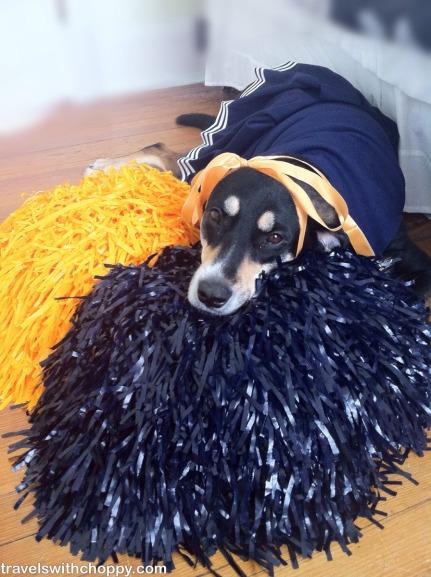 Choppy the Cheerleader