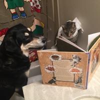Howlidays: National Bathroom Reading Month