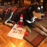 Elf on the Shelf: Silly String