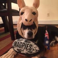 Howlidays: Australia Day