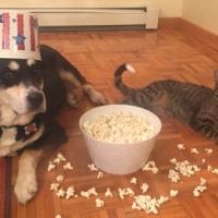 Howlidays: Popcorn Day