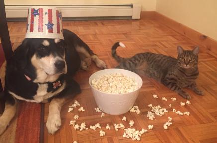 Popcorn Dog