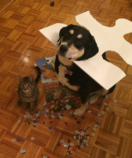 Puzzle Dog and Cat