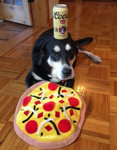 Pizza and Beer Dog