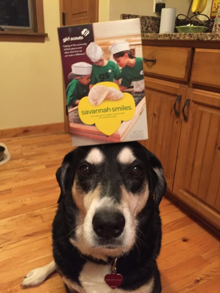 Girl Scout Cookie Dog