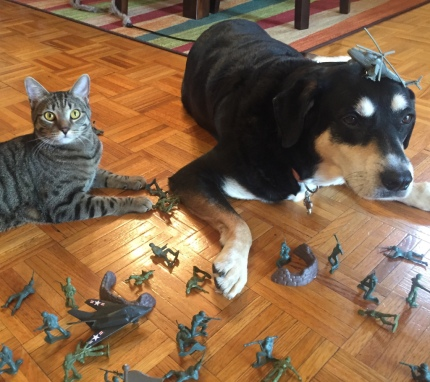 Toy Soldier Cat and Dog