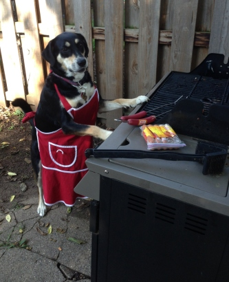 Barbecue Dog