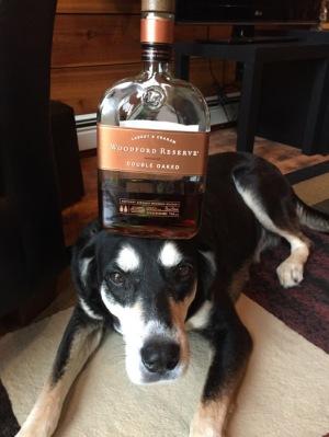 Bourbon Dog