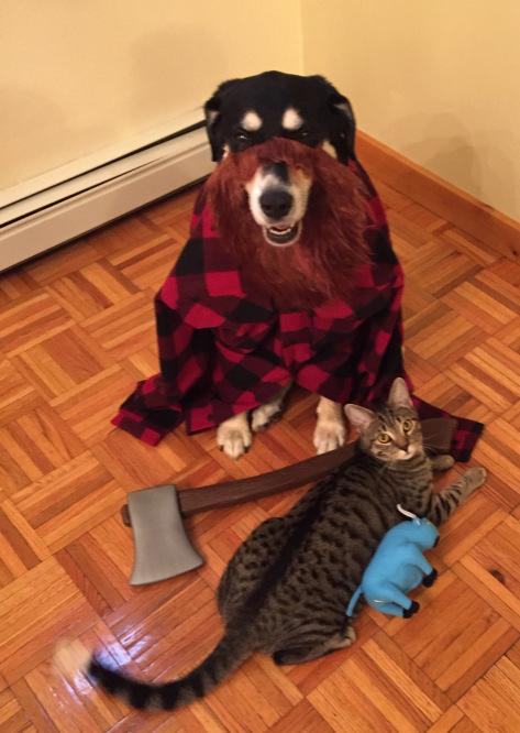 Paul Bunyan Cat and DOg