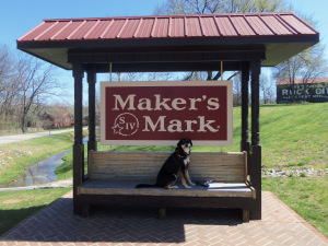 Dog at Makers Mark