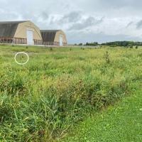 Here's Flapjack: Big Barns